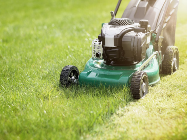 care for your lawn during fall