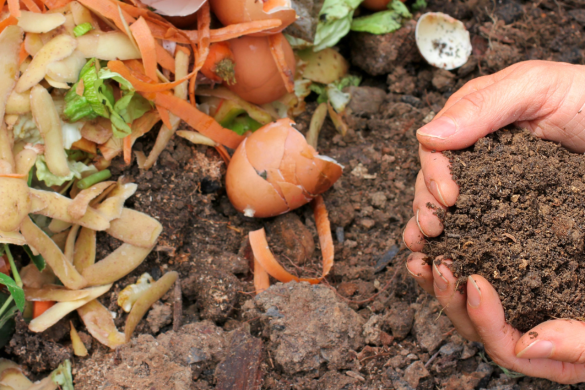 How to Start Your Own Backyard Compost