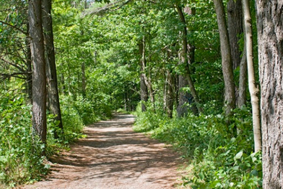 5 Best Hiking Trails in Kleinburg