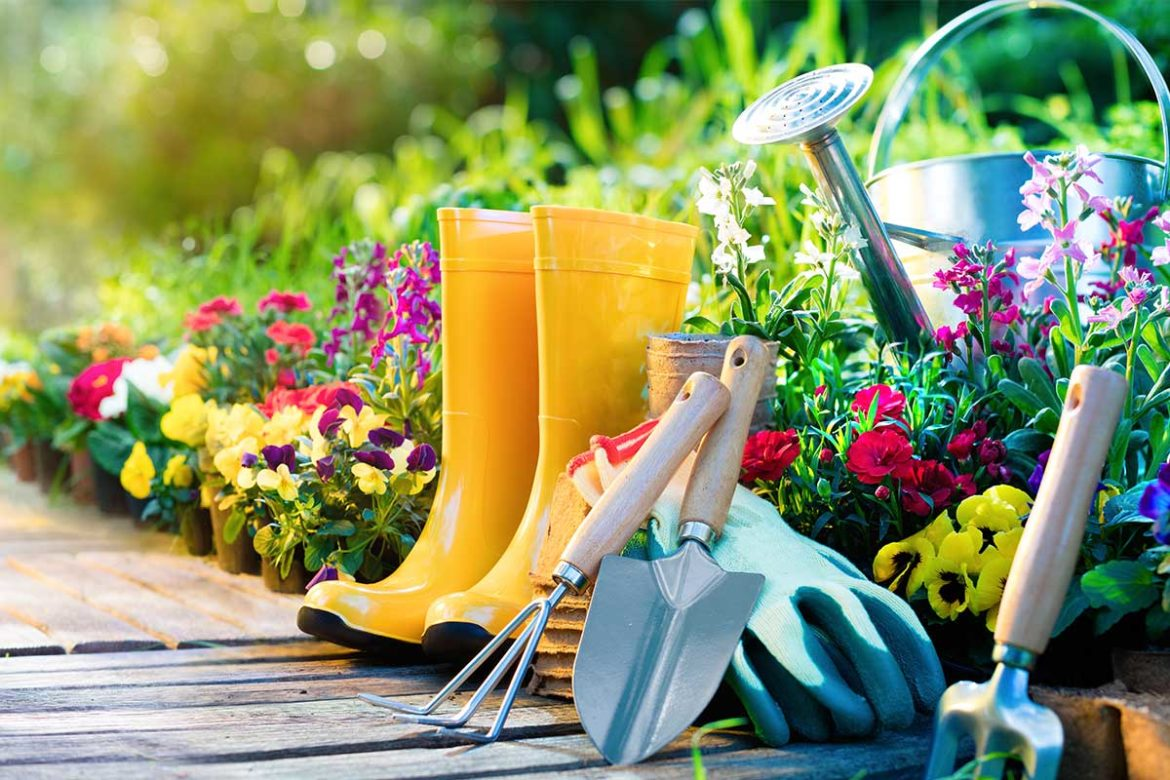 End of Summer Gardening To-Do List